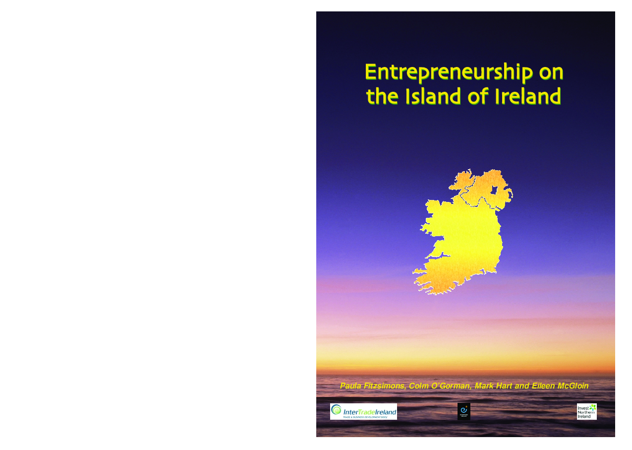 Entrepreneurship on the Island of Ireland 2003