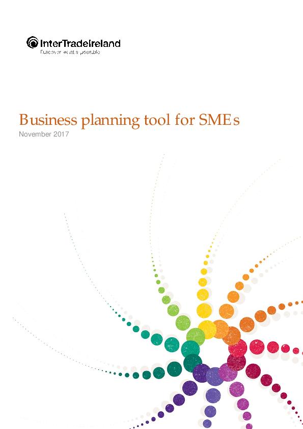 Business Plan Tool For Established SM Es